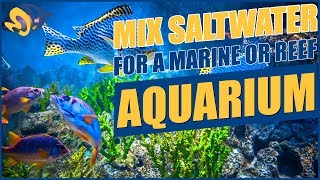 How To Mix Saltwater For Your Aquarium