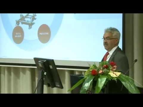 Orodjarne in njihova sistemska vloga v strategijah OEM-ov