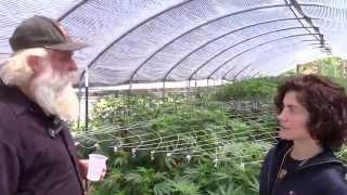 Visiting Farmer Tom's Organic Cannabis Gardens