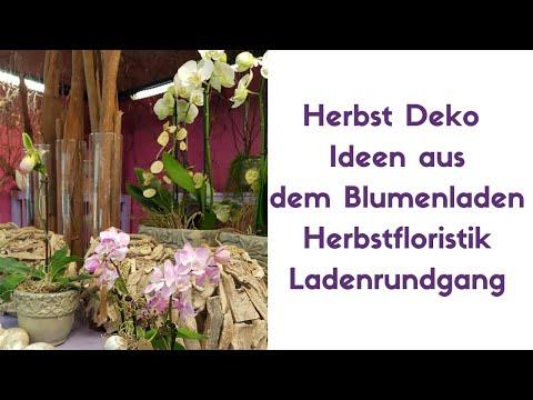 Herbst Floristik - Deko Ideen- Anregungen für eine Herbstdekoration 2019 - Flora Line August 2019