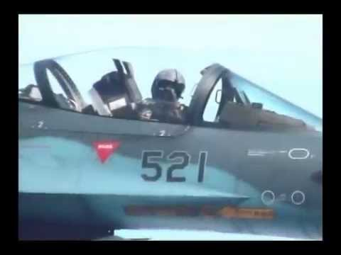 Japan Air Self-Defense Force(航空自衛隊)
