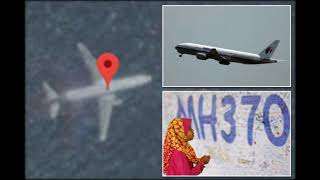 Flight MH370 conspiracy theorist spots 'underwater' plane on Google Maps and claims it's the missing