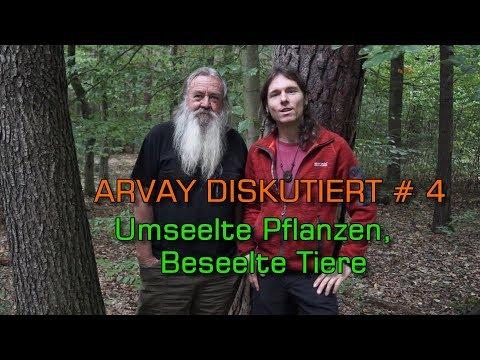 Arvay diskutiert (4) - mit Wolf-Dieter Storl: Umseelte Pflanzen - Beseelte Tiere