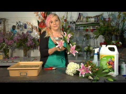 how do i keep fresh cut flowers alive floral tips ideas youtube. Black Bedroom Furniture Sets. Home Design Ideas