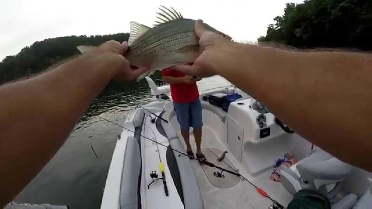 Bass fishing on lake lure nc fishing bite for Lake lure fishing