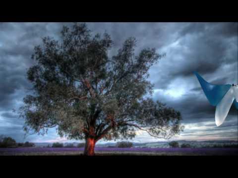 Phoenix  - Fluier in cer
