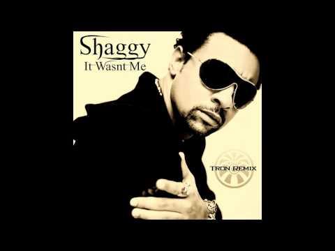 Shaggy - It Wasn't Me (Tron Remix)