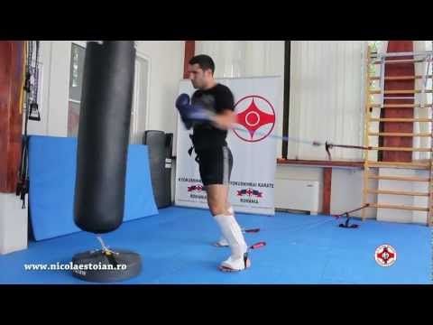 Nicolae Stoian Kyokushin Karate Champion HD