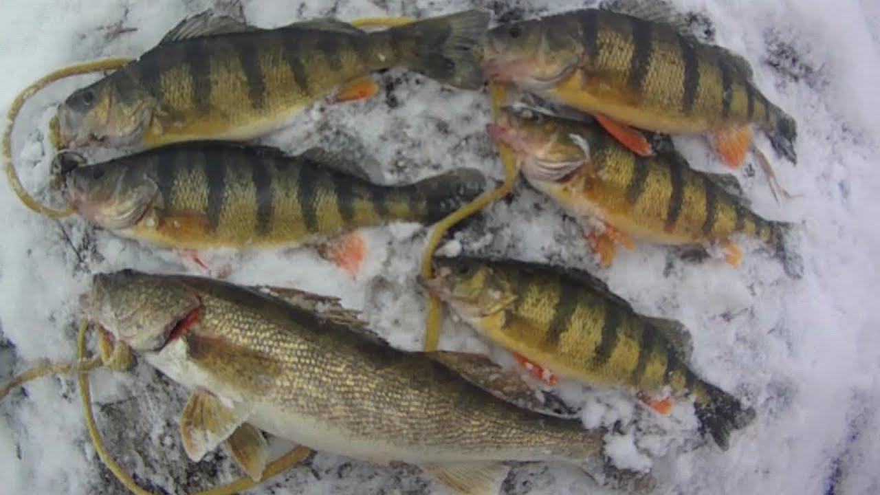 Spillway Fish pa Bait Fishing 28 Spillway