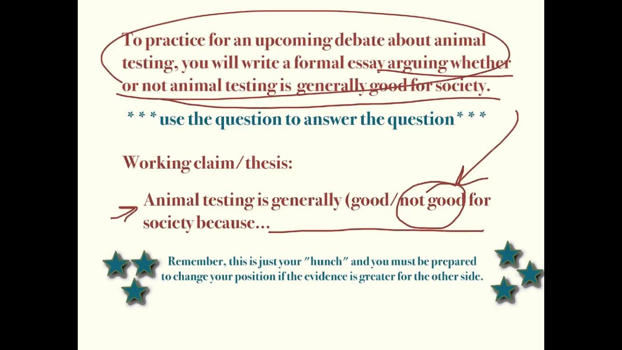what is a good thesis statement for animal testing