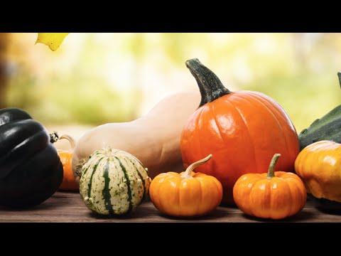 Best Seasonal Produce for Fall