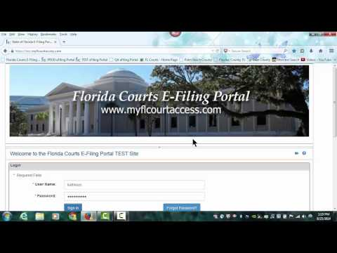 Florida Court's E-Filing Video - Getting Started for the Self-Represented Litigant