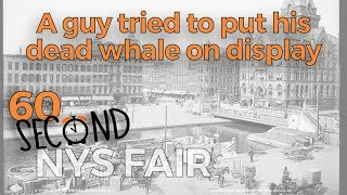 60-Second NYS Fair: The time a guy tried to put his dead whale on display