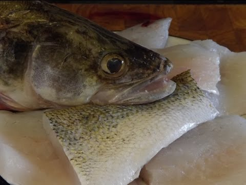 How to fillet and cook, ZANDER/WALLEYE.,(pike-perch).