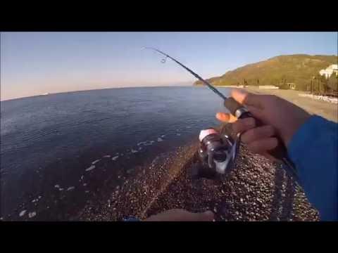 донная рыбалка на черном море