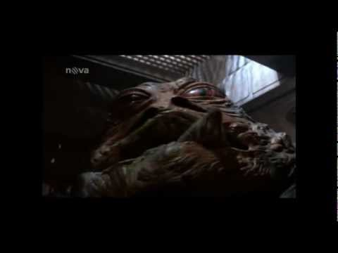 Star wars : Jabba the Hutt death (Cz)