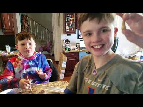 National Geographic Mega Fossil Dig Kit Review