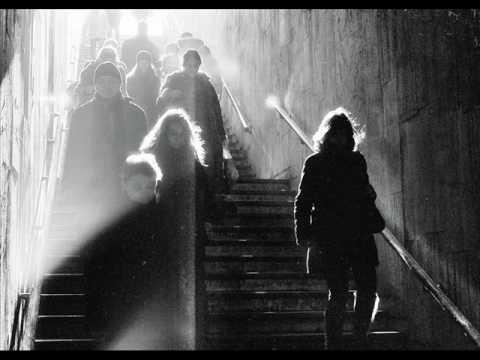 Rivulets - Morning Light