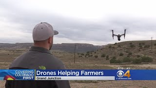 Drones Help Farmers On Western Slope