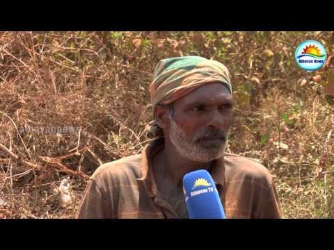 Jaffna - Illegal Lime stone smuggling