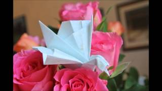 Origami Swans And Boxes