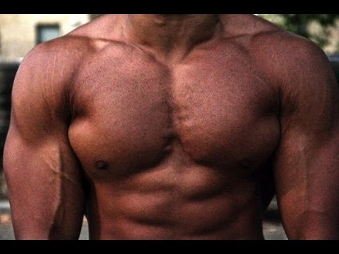 Build a Bigger Chest Workout (No Equipment Needed!!)