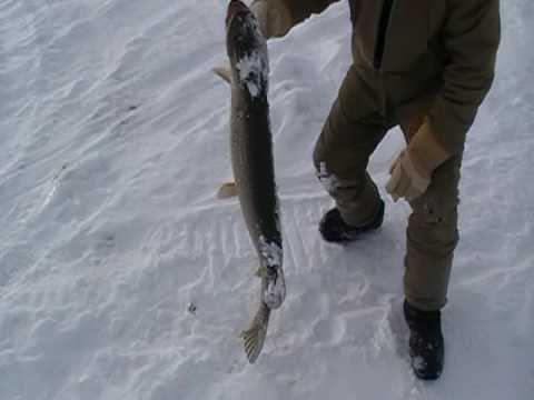 Ice Fishing Alberta Pike 19 pounds