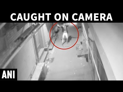 Delhi's dancing thief caught on camera