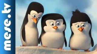 A Madagaszkár Pingvinjei - filmelőzetes, hosszú változat (animációs film, x)