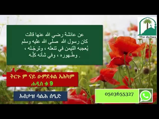 tigrigna dawa ትርጉም ናይ ዑምደቱል አሕካም 9 شرح عمدة الاحكام باللغة التجرينية