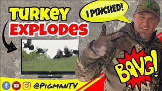 Turkey Explodes into Back Flip!! Archery Kill in California!