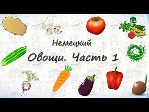 Овощи на немецком. Часть 1