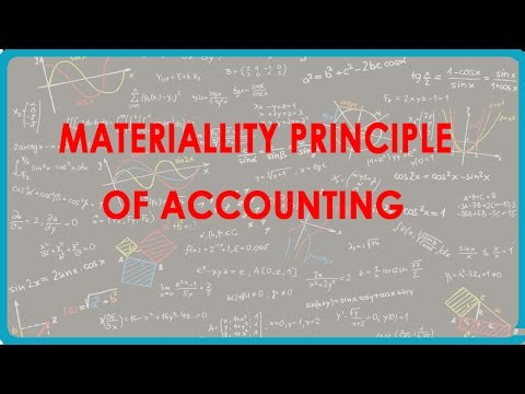 1175. Materiallity Principle of Accounting