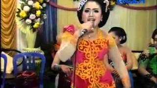 Erin Kusuma Wakil Rakyat SUPRA NADA TERBARU Live Plosorejo Langgam Jowo