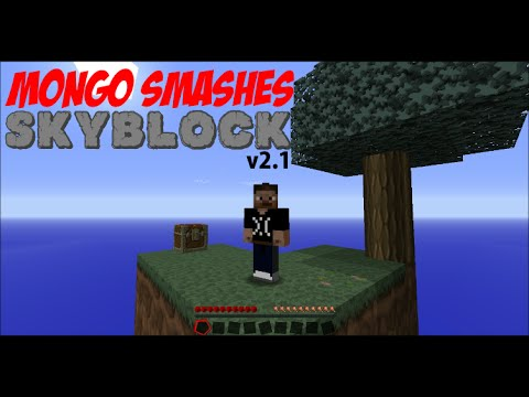 Skyblock 2.1 - Part :1 Ruminations on Situations