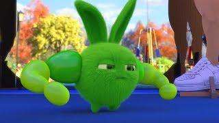 Sunny Bunnies | Ich bin der Stärkste! | Karikatur für Kinder | WildBrain