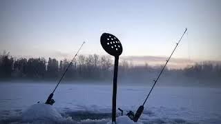 Ice Fishing Big Lake Alaska ( Big Char)