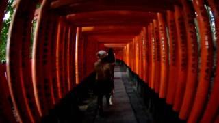 PENTAX K-7 VIDEO 伏見稲荷 in KYOTO 10-17mm FISHEYE
