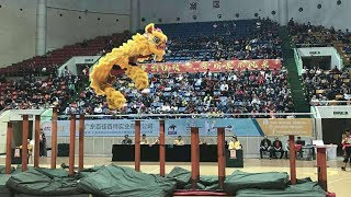 Stunt: Behind the Chinese dragon and lion dance