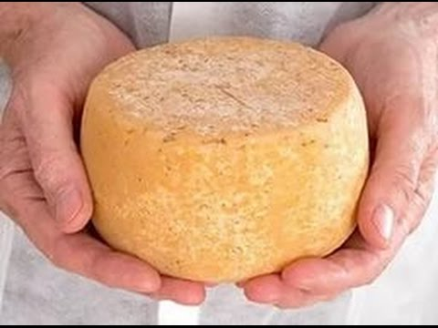 Рецепты приготовления твердого сыра в домашних условиях