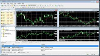 Video Tutorial Metatrader 4 Español Forex - Parte 1