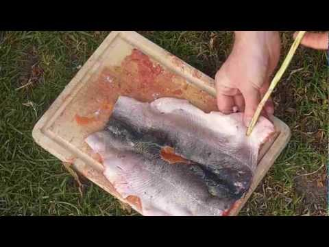 Ponassing - Fillet and Cook a trout the Indigenous way - Primitive Skills