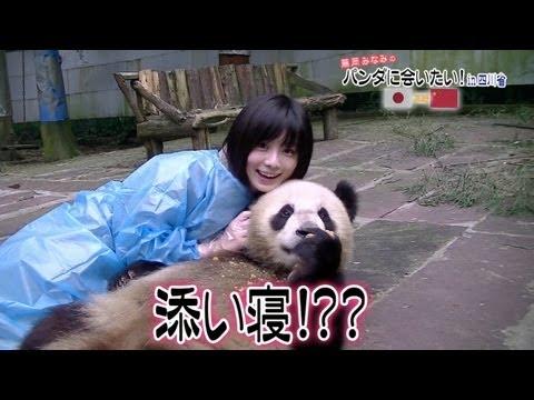 藤岡みなみのパンダに会いたい!in 四川省 その1