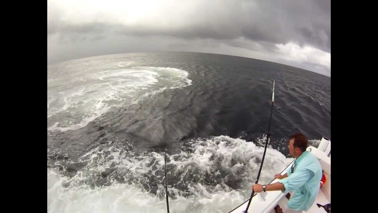 Gulf of mexico tuna with mgfc youtube for Mexican gulf fishing company