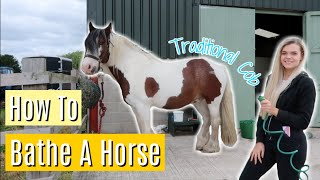How to Bathe a Horse | Tutorial | Lilpetchannel