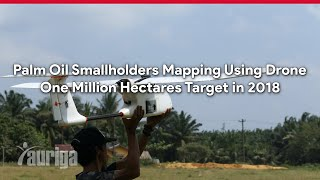 Palm Oil Smallholders Mapping Using Drone, One Million Hectares Target in 2018