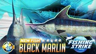【釣魚大亨 Fishing Strike】 New fish Black Marlin Mozambique Channel