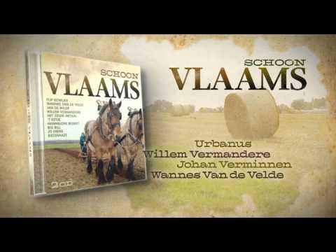 SCHOON VLAAMS - 2CD