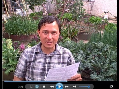 Can I Compost Oranges and Other Citrus Fruits & More Organic Gardening Q&A