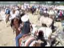 cabalgata de morelos 2008